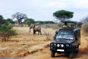 Tanzania-is-looking-to-diversify-its-tourism-sector-from-the-traditional-focus-on-wildlife