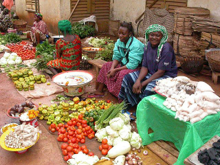 Burkina Faso: women succeed with self-initiated microcredit system