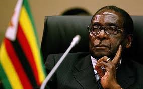 Mugabe succession: Things fall apart?