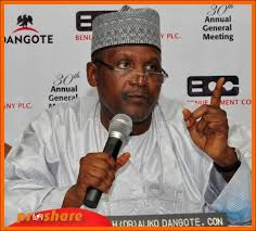 Africa's richest man Dangote plans $16bn investment push