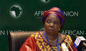 African Union Commission Launches the African Union Foundation