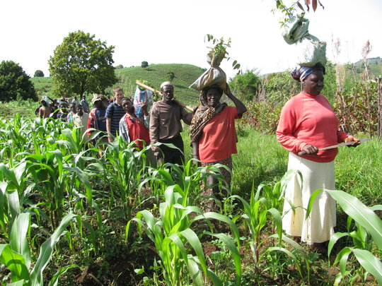 Cameroon dedicates $20 million to support national agricultural development