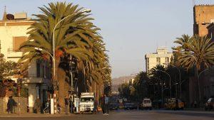 Palm trees along the main street of Eritrea's capital Asmara. (Photo: Thomas Mukoya/Reuters)
