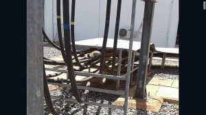 KenGen posted a photograph of what appears to be a vervet monkey crouching on top of electrical equipment.