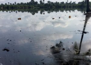 In some places the pollution has killed all the fish