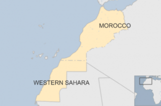 Morocco seeks to rejoin African Union after Western Sahara row