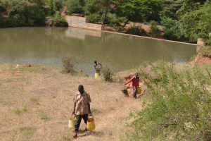 Families carry water from a water catchment pond constructed in Kenya. TRF/Isaiah Esipisu