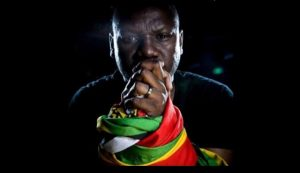 Evan Mawarire started #thisflag, but the movement has taken on new life over the past few months.