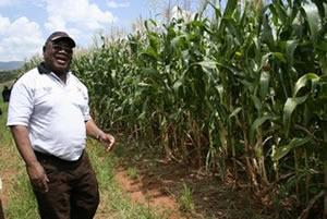 President Rupiah Banda at his farm in Chipata