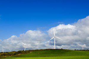 Windmills in the Western Cape, South Africa. Credit: jbdodane.