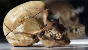 Skulls of Ovaherero and Nama people are displayed during a service attended by representatives of the tribes from Namibia in Berlin, Germany, Sept. 29, 2011. (AP Photo/Michael Sohn)