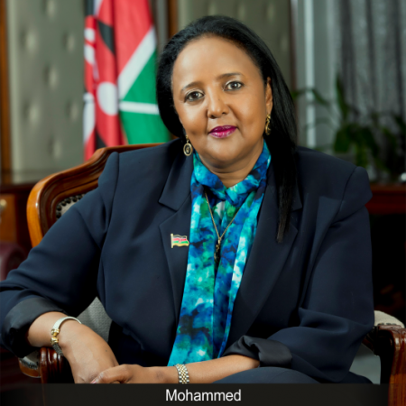 Image result for ambassador amina mohamed