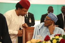 Senator Shehu Sani, has criticised President Muhammadu Buhari's led federal government