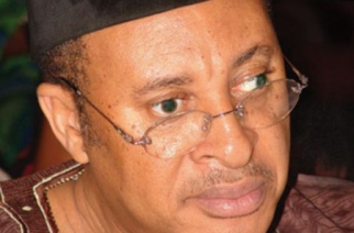 What Nnamdi Kanu Told Igbo Professionals in Prison – Utomi
