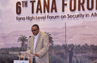 Tana Forum Brainstorms on How Africa Can Harness its Resources