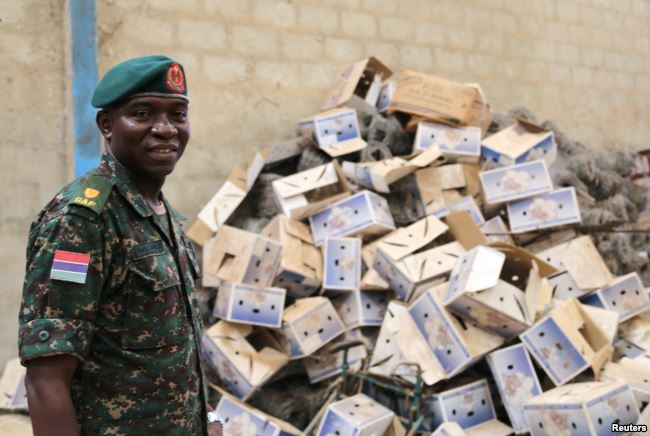 Gambian Major YMS Darboe stands in front of a pile of empty cardboard boxes stored in a warehouse in former Gambian President Yahya Jammeh's personal estate in Kanilai, Gambia, July 1, 2017.