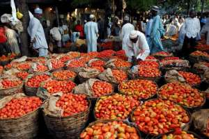 People walk past baskets of tomatoes in the Yankaba market in Kano, northwest Nigeria August 23, 2017. Picture taken August 23, 2017 REUTERS/Akintunde Akinleye PROBLEMS