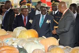 President Mugabe and his Mozambican counterpart Filipe Nyusi tour stands at Harare Agricultural Show in Harare