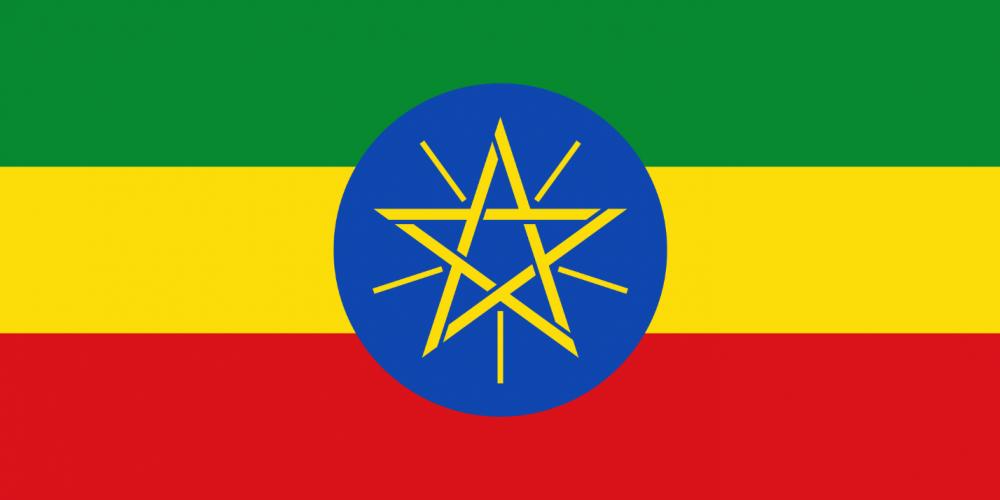 Ethiopian security forces open fire on civilians