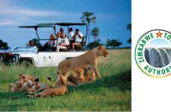 Zimbabwe developing tourism strategy to position itself as an investment hub