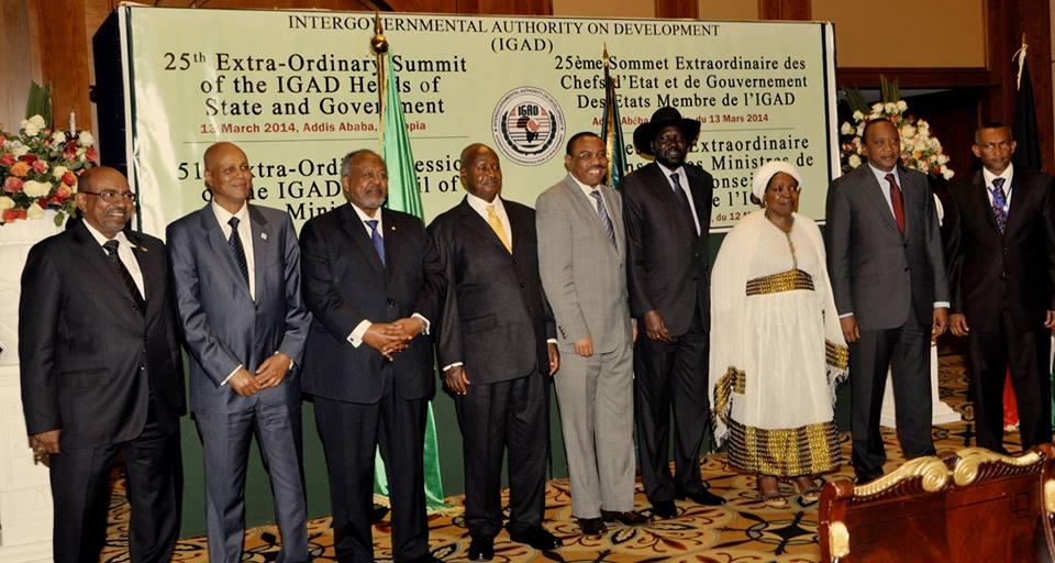 IGAD Leaders