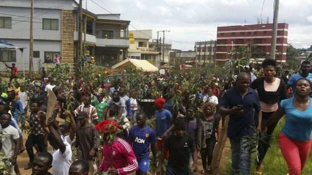 Many in Cameroon's English-speaking minority have protested against discrimination