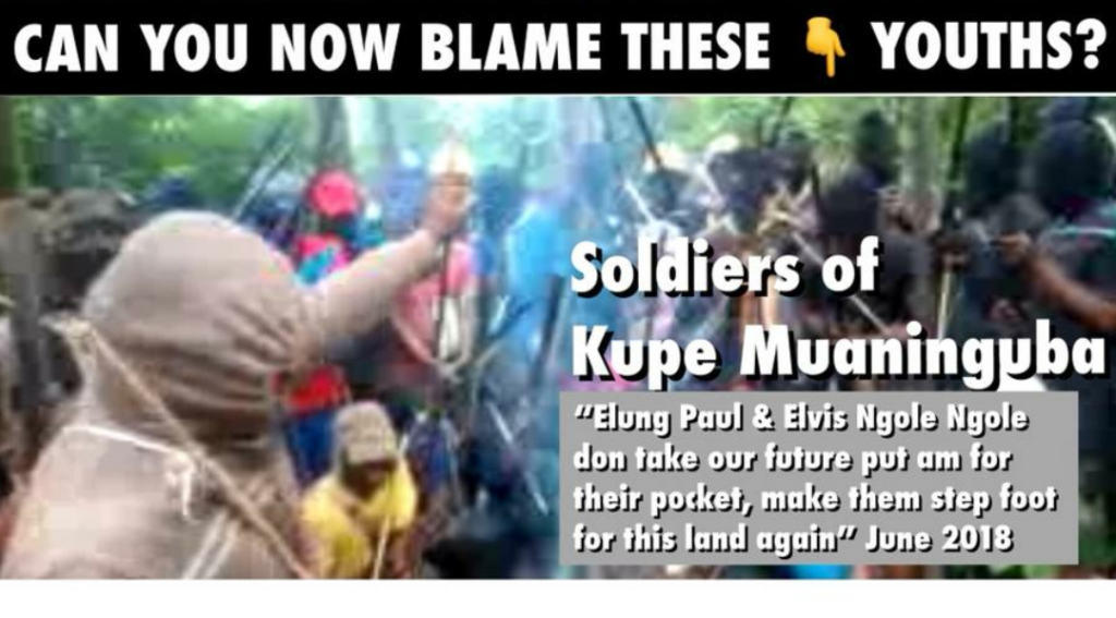 This screenshot photo is from a video in which the Amba Fighters in one of the villages in Ambazonia accuse the elite of 'stealing' their future; they are ready to punish any of these elite if and when they visit the village. Essentially, Elung Paul and Elvis Ngole Ngole are banned from coming back to the village.