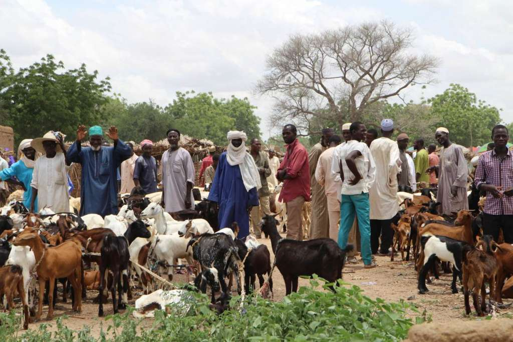 Men buying and selling goats at the market in Dargue village in Maradi Region in south central Niger on Aug 16, 2018. Thomson Reuters Foundation/Thin Lei Win
