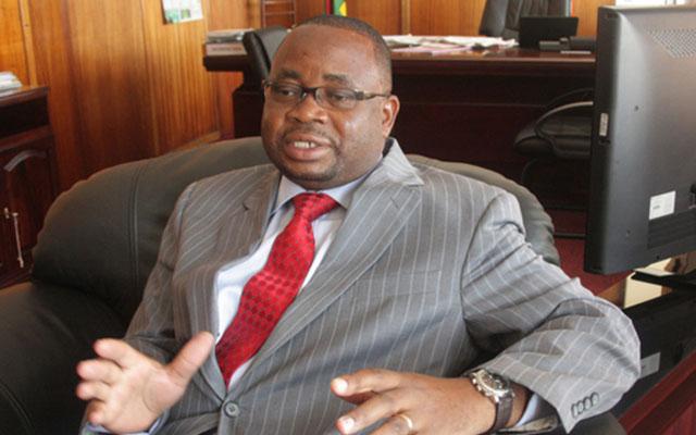 Primary and Secondary Education Minister Professor Paul Mavima