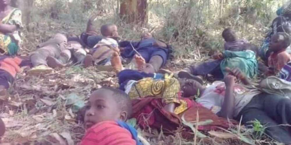 Anglophone crisis forcing many children, families to sleep in bushes
