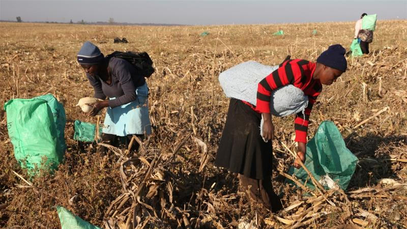 New UN report reveals that hunger in Africa continues to rise