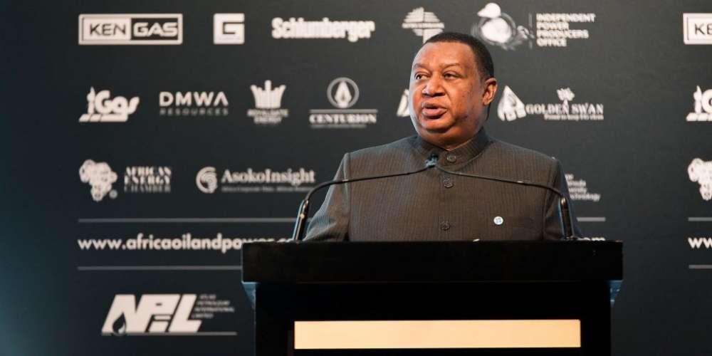 Equatorial Guinea President, Organization of the Petroleum Exporting Countries (OPEC) Secretary General Headline African Petroleum Producers' Organization (APPO) CAPE VII